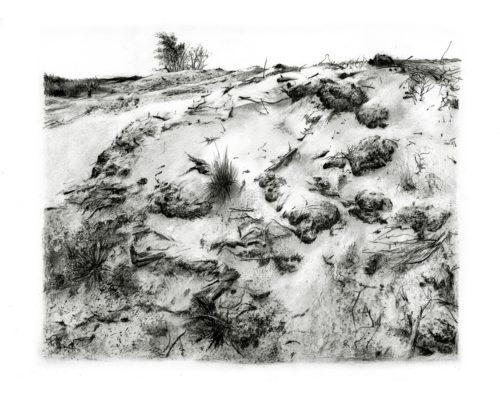 mike-stott-landskap-sandskap4