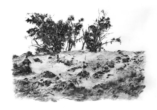 mike-stott-landskap-sandskap8